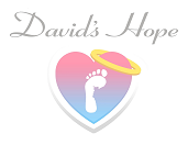 Davids Hope Pregnancy Loss Ministry
